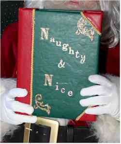 The Naughty or Nice Book